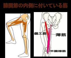gasokuen1